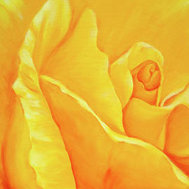 Yellow rose detail by Karen Kaspar