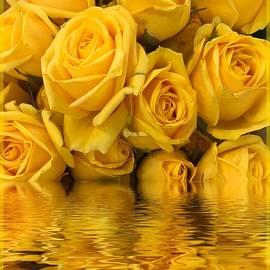 Barbara Zahno - Yellow Roses Reflection