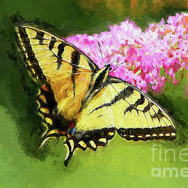 Yellow Swallowtail Butterfly by Tina  LeCour