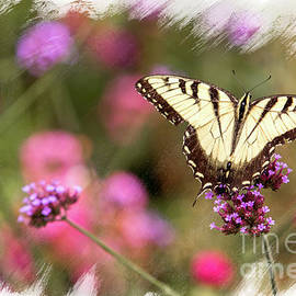 Yellow Swallowtail With Brushed Edge by Eleanor Abramson