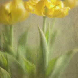 Elena Nosyreva - Yellow Tulips