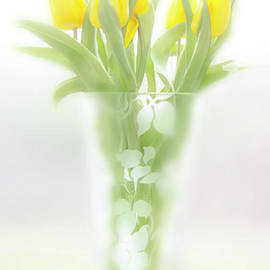 Hal Halli - Yellow tulips in a glass vase