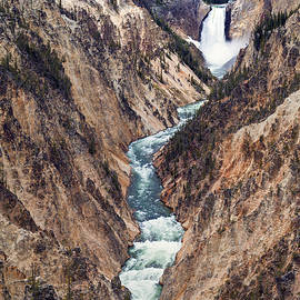 Yellowstone Falls by Robert Bynum