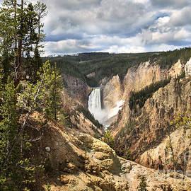 Yellowstone National Park by Robert Bales