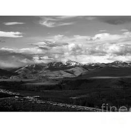 Yellowstone National Park Scenic by Greg Kopriva