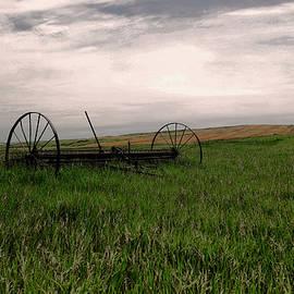 Yesteryears field by Jeff Swan