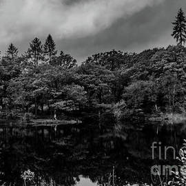 Yewtree Tarn Reflections. by Nigel Dudson