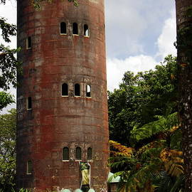 Yokahu Observation Tower El Yunque Rain forest Puerto Rico by Charlene Cox