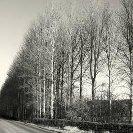 Clive Beake - Yorkshire Landscape3