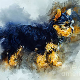 Ian Mitchell - Yorkshire Terrier