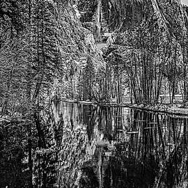 Bill Gallagher - Yosemite Falls From the Swinging Bridge in Black and White
