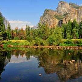 Amy Dooley - Yosemite Reflections