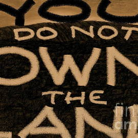 You Do Not Own the Land by Tim Richards