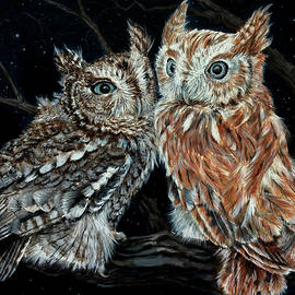 Young love on a starry night - Screech owls by Ruth Ann Ventrello