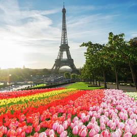 Anastasy Yarmolovich - Eiffel Tour from Trocadero Gardens