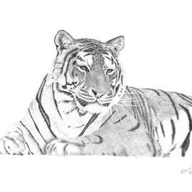 Patricia Hiltz - Zarina a Siberian Tiger