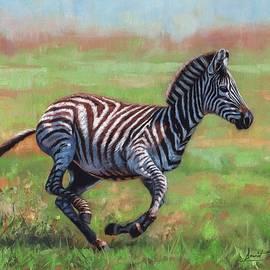 David Stribbling - Zebra Running