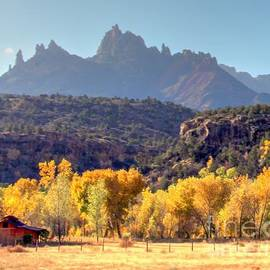 Zion Ranch by Charlene Cox