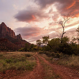 Zion Sunset by Wesley Aston