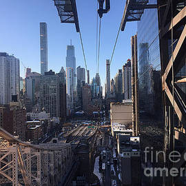 Millie Reeve - Ziplining through New York City