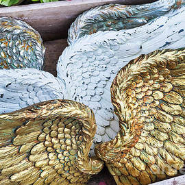 Angels Wings by Tim Gainey