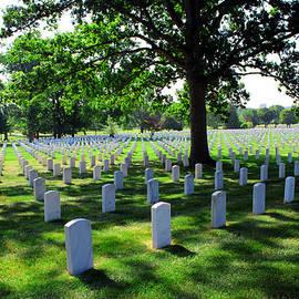 Arlington National Cemetery by Michael Rucker