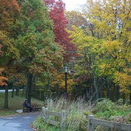 Dora Sofia Caputo Photographic Design and Fine Art - Autumn, Bursting with Beauty