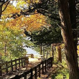 Bruce Bley - Autumn in the Park