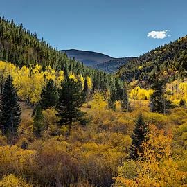 Autumn Splendor #2 by Lorraine Baum