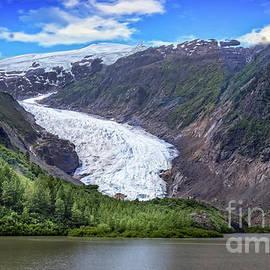 The Bear Glacier by Robert Bales