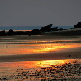 Cape Cod Bay At Low Tide by Dianne Cowen