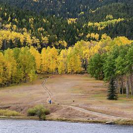 Colorado Autumn by John Bartelt