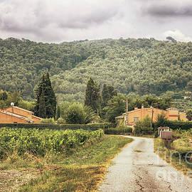 Countryside Near La Castelet by Ariadna De Raadt