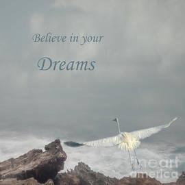Dreams by Elisabeth Lucas