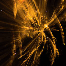 Golden Fireworks by Yulia Kazansky