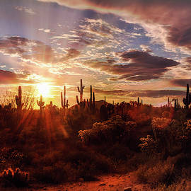 Heavenly Desert Skies At Sunset   by Saija Lehtonen