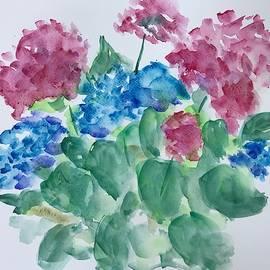 Hydrangeas by Marita McVeigh