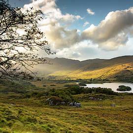 Irish Countryside by S Katz
