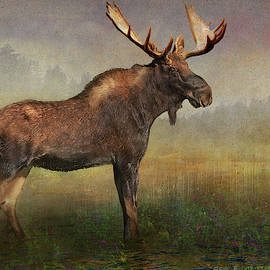 Moose At The Edge Of Light by R christopher Vest