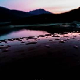 Michelle Ressler - Morning Dew