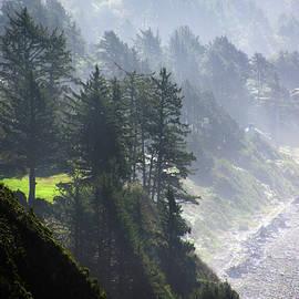 Morning mist on coastal hills by Steve Estvanik