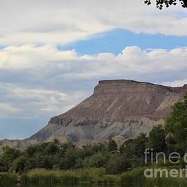 Mount Garfield by Tammie J Jordan