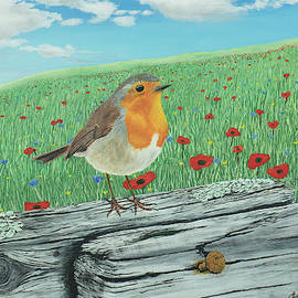 Artful  Robin Redbreast by James Irons