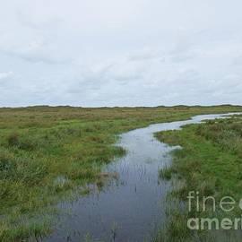 Near De Muy On Texel by Chani Demuijlder