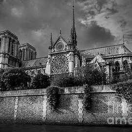 Notre Dame at the Seine, Paris 2016 by Liesl Walsh