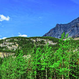 Panoramic View Of Canadian Rockies by Robert Bales