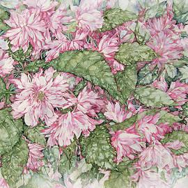 Pink April by Kim Tran