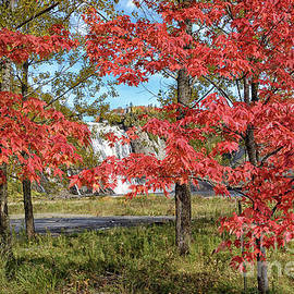 Red Maples at Chute Montmorency by Norman Gabitzsch