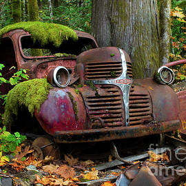 Relic Of The Past by Bob Christopher