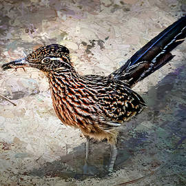 Roadrunner Making Nest by Penny Lisowski